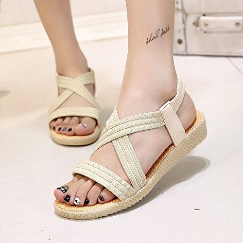 Roma Roman beige yalanshop sandali di di solido raccordo di elastico pesce colore 35 estate sandals semplice piatto fondo AwpgZ