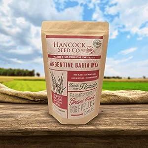 Hancock's Argentine Bahia Grass Seed Mix (Coated)