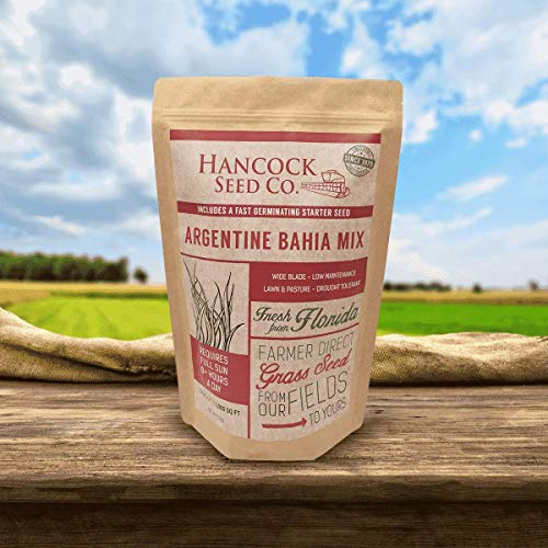Hancock's Argentine Bahia Grass Seed Mix (Coated)