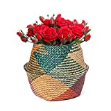 Natural Seagrass Basket, Hand Woven Belly Basket