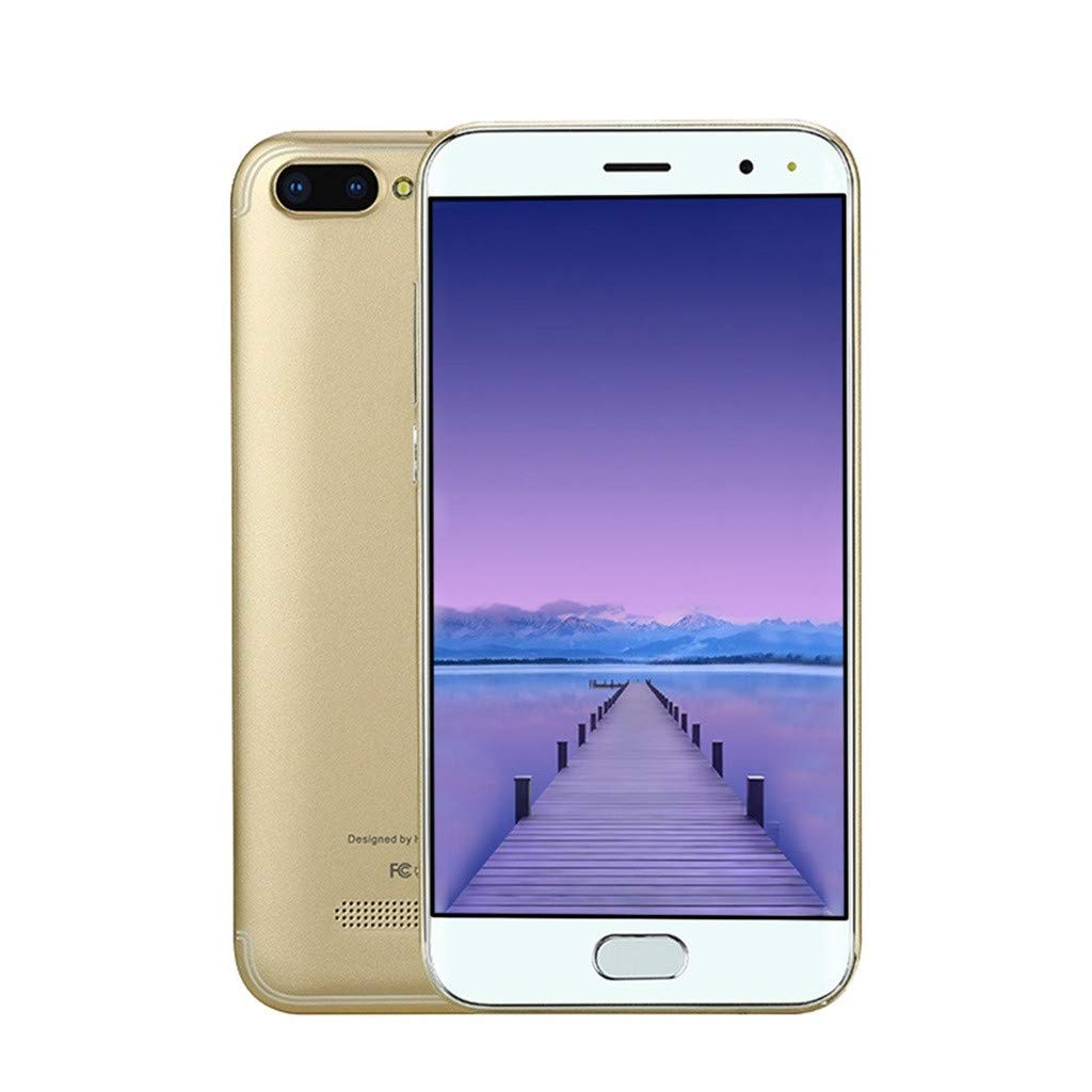 Birdfly 5.0 inch Android 6.0 1G+4G GPS 3G Mobile Phone Mobile Phone (Operators T-Mobile and verizon) (Gold)