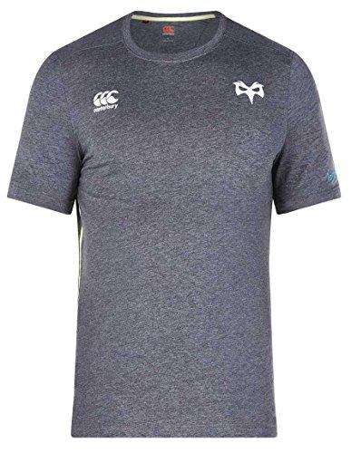- Canterbury Ospreys Rugby Cotton Training Tee 17/18 - Nine Iron Marl