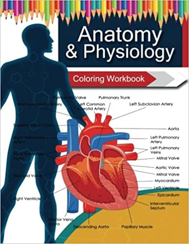 Anatomy & Physiology Coloring WorkBook Books: Amazon.co.uk: Dr ...