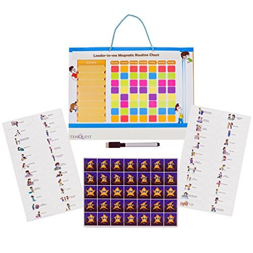Magnetic Kids Chore, Reward and Responsibility Chart by Tenquest With 85 Magnetic Pcs, Dry Erase Marker and Fridge or Wall Hanger - 17\