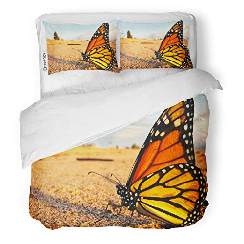 Semtomn Decor Duvet Cover Set Twin Size Monarch Butterfly Takes Well Deserved Break Shores of Lake 3 Piece Brushed Microfiber Fabric Print Bedding Set Cover ()