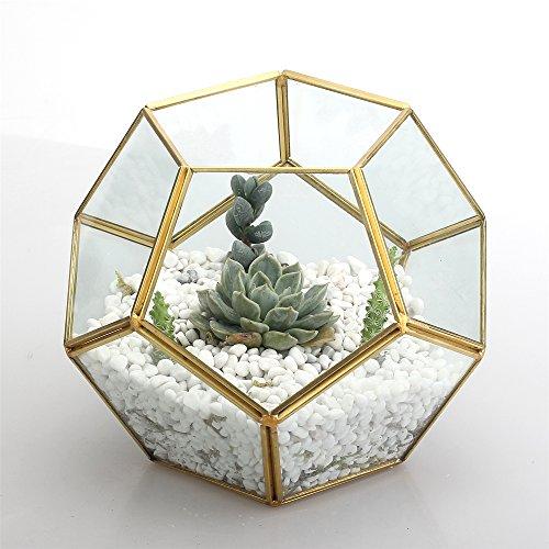 Gold Copper Brass Tabletop Geometric Pentagon Ball Shape Open Fern Moss Succulent Plants Glass Terrarium Planter Pot Box 6.89 x 6.89 x 5.9inches Christmas Present