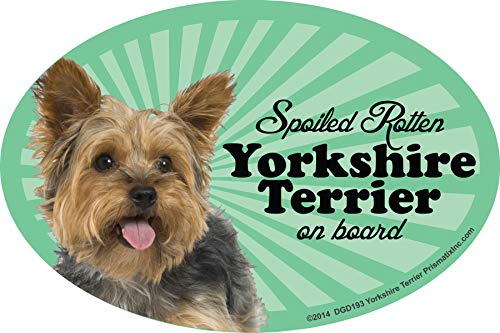 Prismatix Decal Yorkie Car Magnets: Spoiled Rotten Yorkie - Oval 6