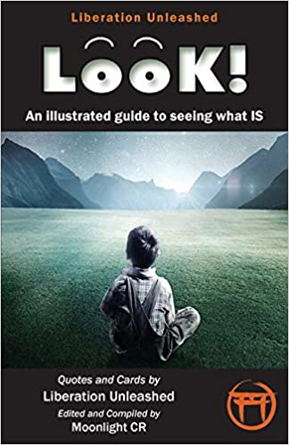 Amazon Look An Illustrated Guide To Seeing What Is