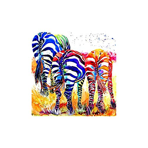 Colorido Colorful Zebra Pattern Wall Art Cross Stitch,DIY Mosaic Full Round Diamond Painting Poster Article 30x30cm C310 (Zebra Full Diamond)