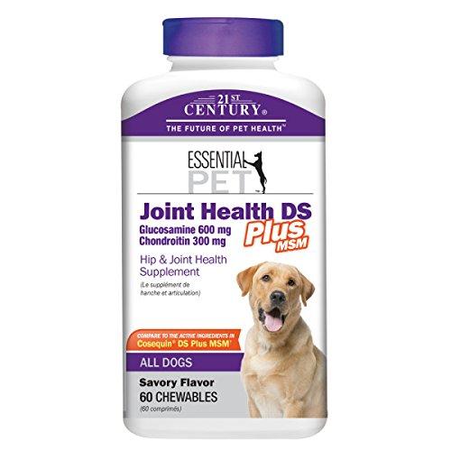 21st-century-joint-health-ds-plus-msm-dog-supplements