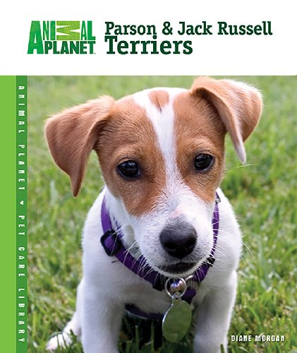 Parson Jack Russell Terrier - Parson & Jack Russell Terriers (Animal Planet® Pet Care Library)