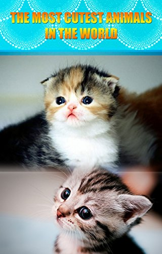 Amazoncom Cute Animals For Children The Most Cutest Animals In