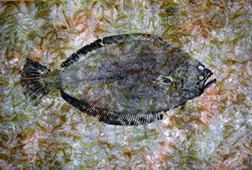 Flounder GYOTAKU fish Art print 8.5 X 11 inch by Barry Singer. Beach House Cottage décor