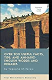Ethiopia - Travel Guide: Over 200 Useful Facts, Tips, and Amharic-English Words and Phrases