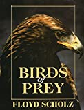 img - for Birds of Prey by Floyd Scholz (1993-12-01) book / textbook / text book