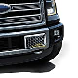 ford chrome accessories - Justautotrim Front Bottom Bumper Moulding Chrome Cover trims Kit for 2015 2016 2017 Ford F150 F-150 Accessories