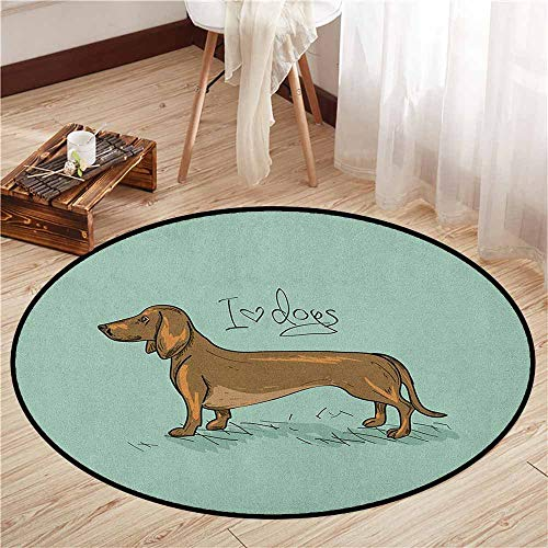 Bedroom Rugs,Dachshund,Dachshund Puppy on an Abstract Turquoise Background Pure Breed Animal,Sofa Coffee Table Mat,5'3