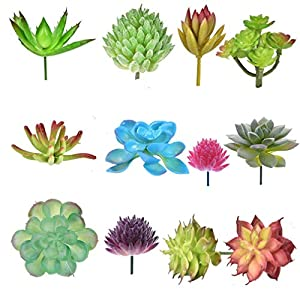 OBANGONG Pack of 14 Assorted Artificial Succulents Picks Textured Aloe Faux Succulent Pick Succulent Stems Fake Succulent Faux Succulent Floral 25
