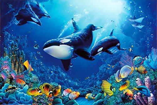 (24x36) Delight of Life Underwater Scene Art Print Poster