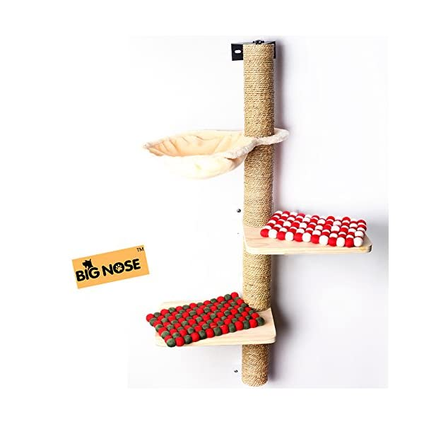 BIG NOSE- Wall Mounted Cat Scratching Post Multi Level Cat Shelves with Solid Wood Steps and Sunny Seat Hammock … 1