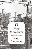 O Holy Insurgency, Mary Biddinger, 1937854205