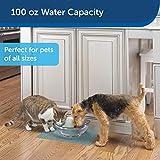 PetSafe Drinkwell Sedona Dog and Cat Water