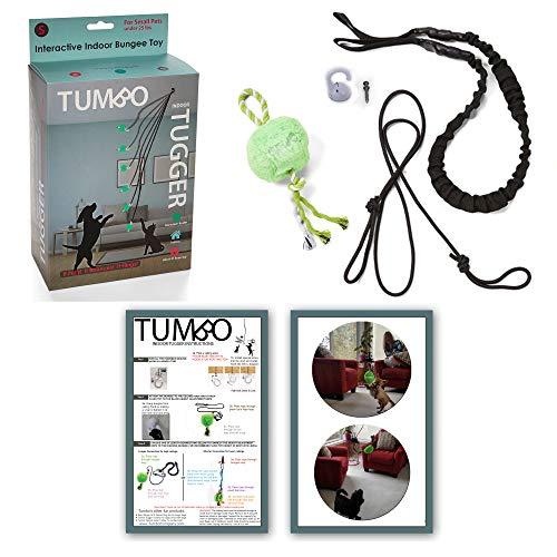 Tumbo Tugger Indoor Exercise Dog Toy - (Indoor Ceiling Hanging Bungee Rope tug Toy) ENTERTAINS Your Dogs w/Energetic, Interactive Solo Play tug or war Action - Tiny to Small Dogs Under 25 lbs