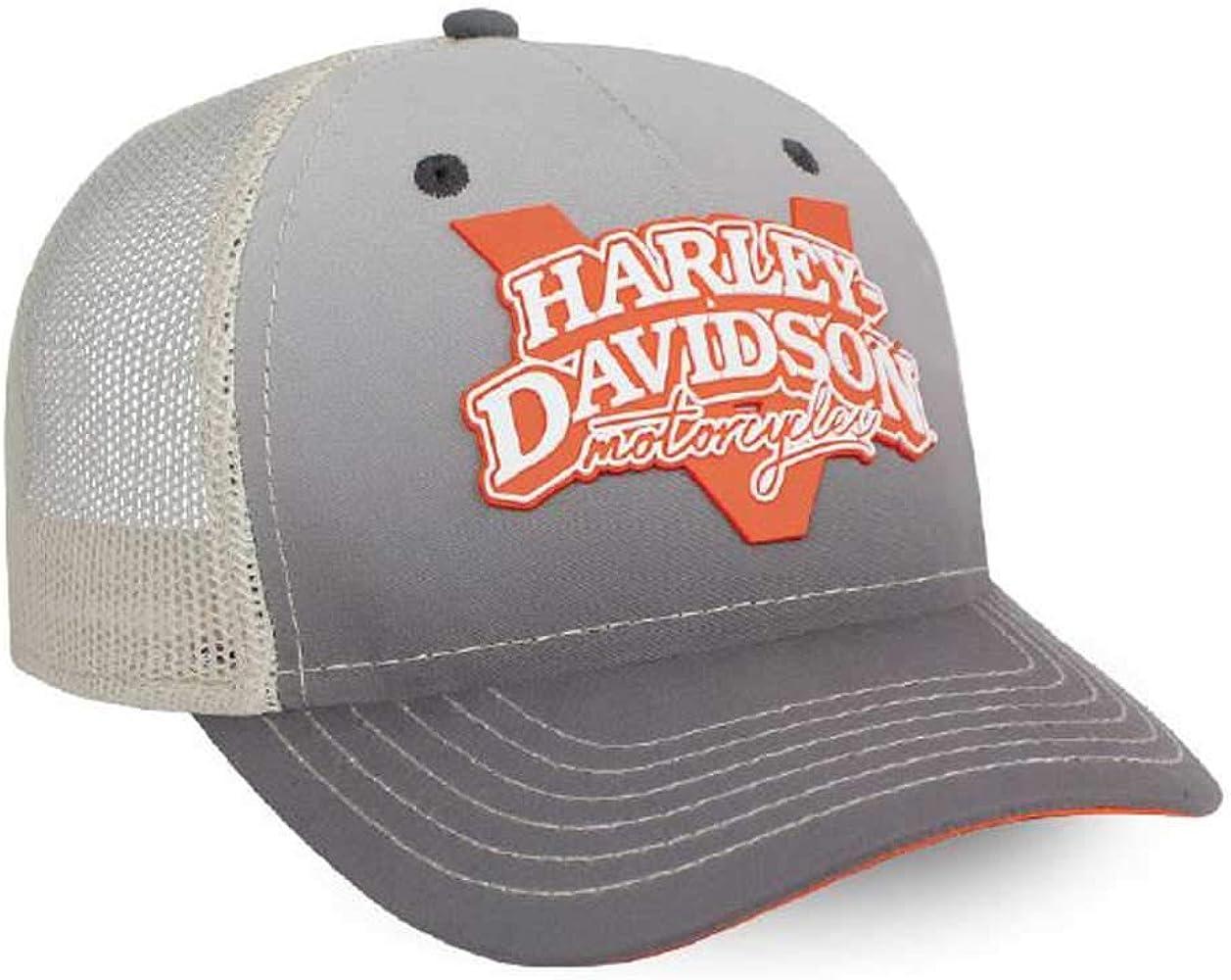 Harley-Davidson V-Twin Power Gorra de béisbol Ajustable, Gris ...