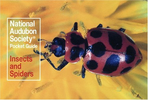 National Audubon Society Pocket Guide: Insects and Spiders (Audubon Society Pocket (Audubon Pocket Guide)