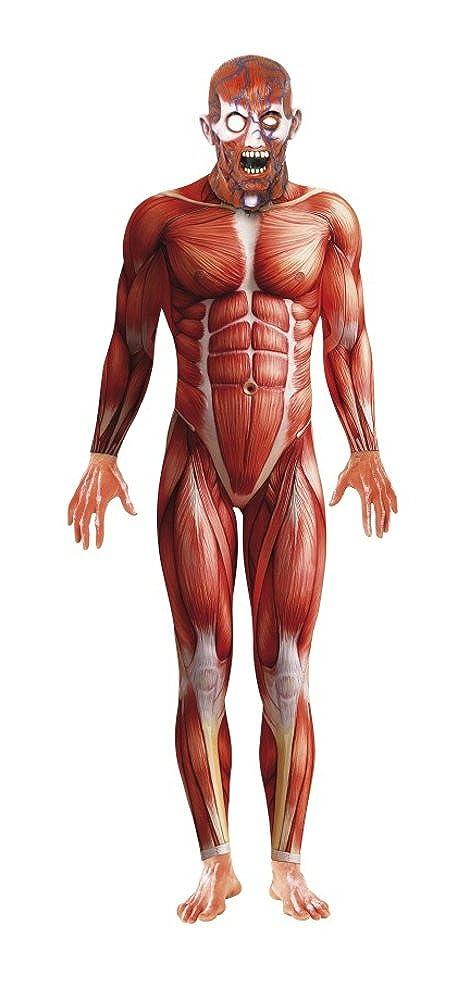 producto de calidad Disfraz Carnaval Hombre Hombre Hombre Halloween Anatomía Umana Hombre Piel  17022  tienda de venta