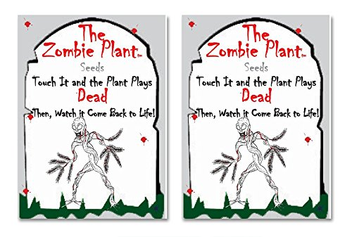ZOMBIE PLANT Seed Packets (2) - Fun Party Gift. Comes with Ten Fun Ideas To Do With Your ZOMBIE PLANT (It