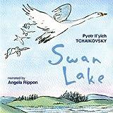 Swan Lake, Op. 20: Act III. Odile and Siegfried dance