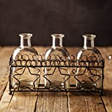 """Multi Vase Glass With Star Metal Rack For Home Office Decor Set of 3 Small Vases 5.5""""H"""