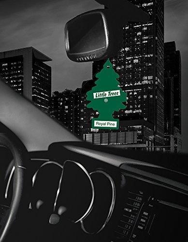 076171101013 - Car Freshener 50101 Little Tree Air Freshener-Royal Pine carousel main 4