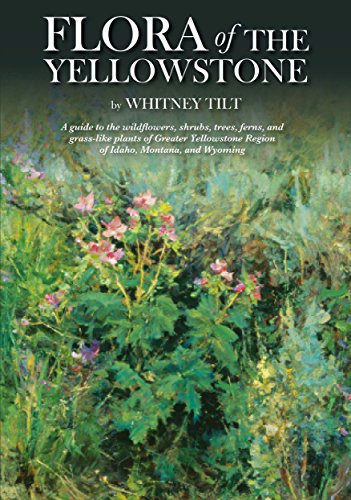Flora of the Yellowstone: Flora of the Yellowstone: A Guide to the wildflowers, shrubs, trees, ferns, and grass-like plants of the Greater Yellowstone Region of Idaho, Montana, and Wyoming