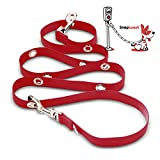 Snapleash Hands Free Double Clip Training Dog Leash