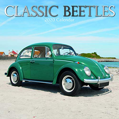 Classic Beetle - 4