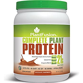 PlantFusion Complete Plant Based Protein Powder, Chocolate Raspberry, 1 Lb Tub, 15 Servings, 1 Count, Gluten Free, Vegan, Non-GMO