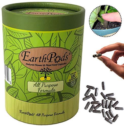 EarthPods Premium Indoor Plant