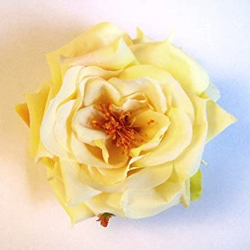 Amazon open garden rose artificial flower hair clippin brooch open garden rose artificial flower hair clippin brooch light yellow mightylinksfo