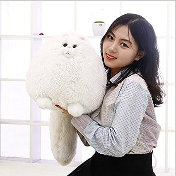 Amazoncom Free Shipping 30cm Korea Cute Fat Persian Cat Plush Toy