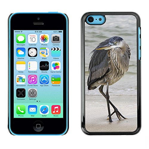 Premio Sottile Slim Cassa Custodia Case Cover Shell // F00007615 oiseau // Apple iPhone 5C