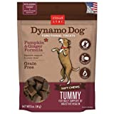 Cloud Star Dynamo Dog Tummy Functional Treat Pouches - Pumpkin and Ginger - 5-Ounce