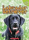 Labrador Retriever, Charles George and Linda George, 0531249336