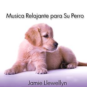 .com: Musica Relajante para Su Perro: Jamie Llewellyn: MP3 Downloads