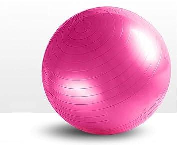 Ssery Gym Ball Yoga Pelota Anti-Ráfaga y Antideslizante 55cm 65cm ...