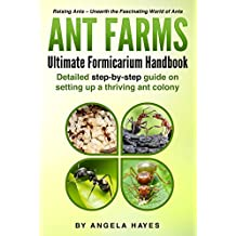 Ant Farms: Ultimate Formicarium Handbook