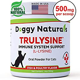 L Lysine for Cats Immune Viralys Support Oral Granule Powder – 500 mg per serving ( 4oz) – Cats & Kittens, Immune Health, Sneezing, Runny Nose,Squinting Palatable Fish & Poultry Flavor L Lysine Powder
