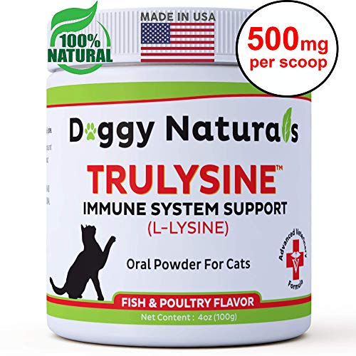 - L Lysine for Cats Immune Viralys Support Oral Granule Powder - 500 mg per serving ( 4oz) - Cats & Kittens, Immune Health, Sneezing, Runny Nose,Squinting Palatable Fish & Poultry Flavor L Lysine Powder