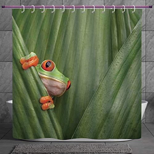 SCOCICI Cool Shower Curtain 2.0 [ Animal Decor,Red Eyed Tree Frog Crowling Between Leaves Tropical Jungle Rainforest Night Art,Green ] Digital Print Polyester Fabric Bathroom Set - Bb Set Rainforest Animals
